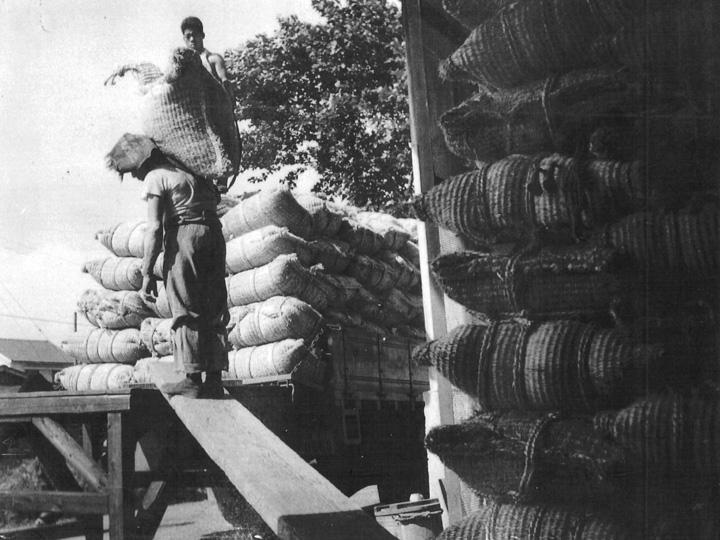 昭和34年7月頃撮影_倉庫からトラックに貨物を積み込んでいる風景(高島営業所)