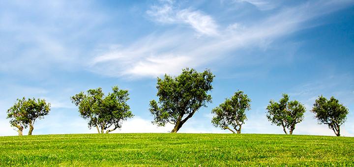 品質方針と環境への取り組み