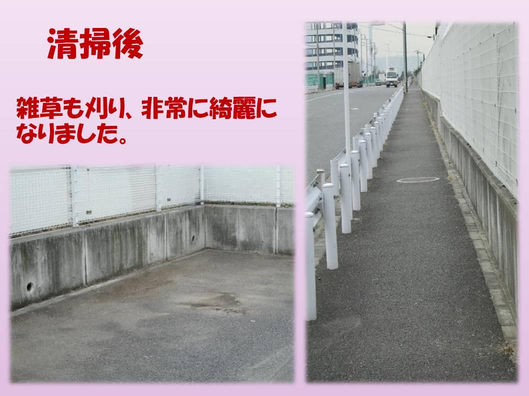 バス停からDPL入口までの通勤路のゴミ清掃